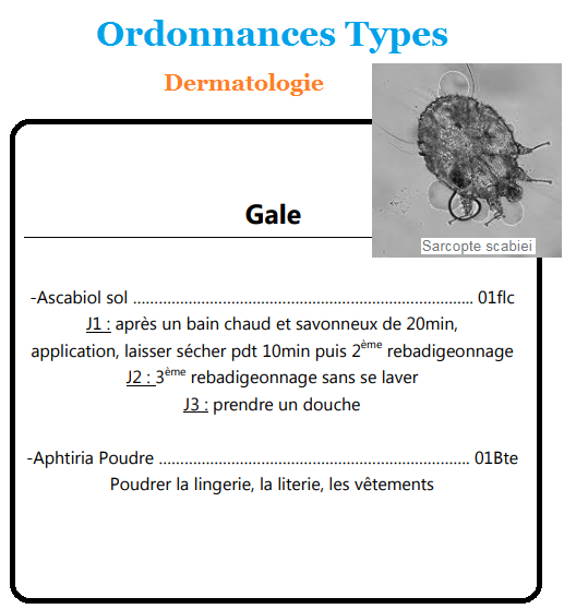 La Gale Ordonnances Types