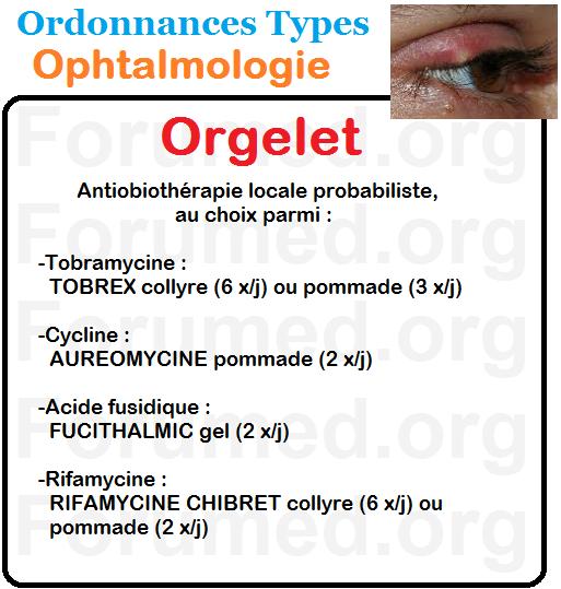 Orgelet Ordonnance Type