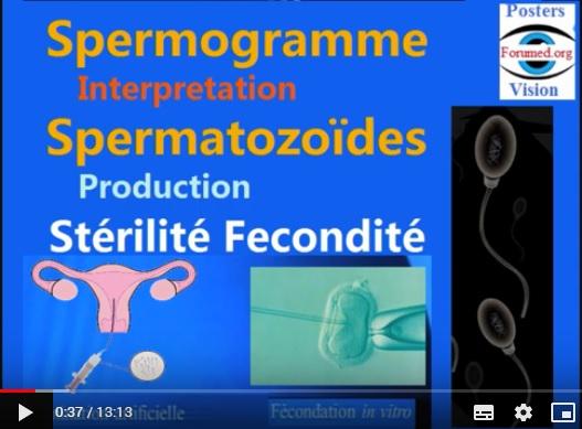 L'insémination et fécondation in vitro