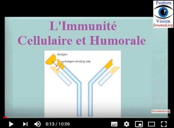 Système immunitaire l'immunité humorale et cellulaire HLA