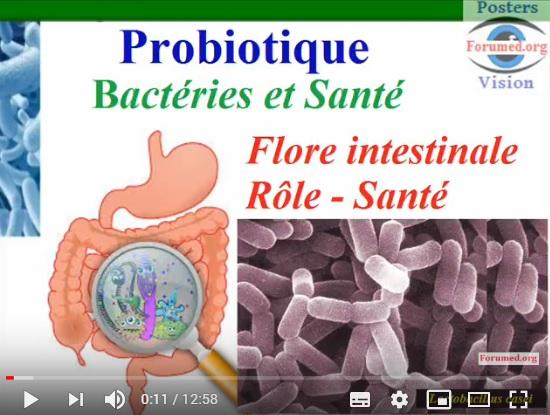 Une molécule produite par une bactérie intestinal Protégé contre le Diabète de type 2