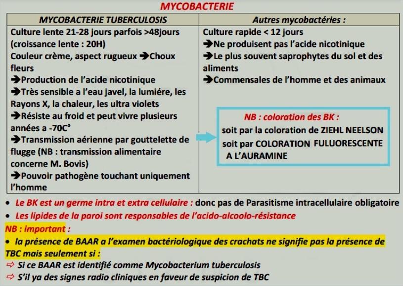 MycoBacterie Tuberculosis BK