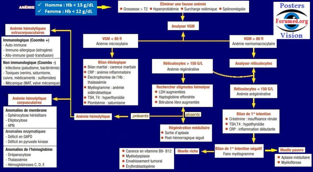 Démarche Diagnostique devant une Anémie isolée