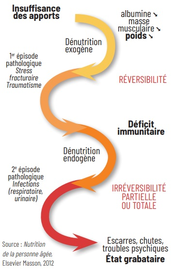 SPIRALE DE LA DÉNUTRITION : INTER-RELATION CAUSES ET CONSÉQUENCES